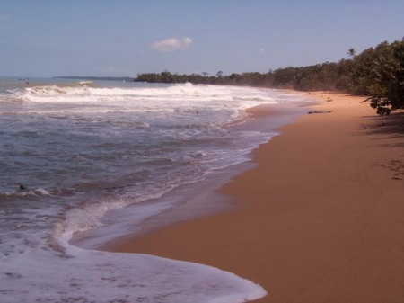 Bluff Beach Waves